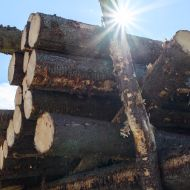 Sun shining through stacked logs, with a winch in the background