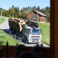 The log transporter, pictured through a window